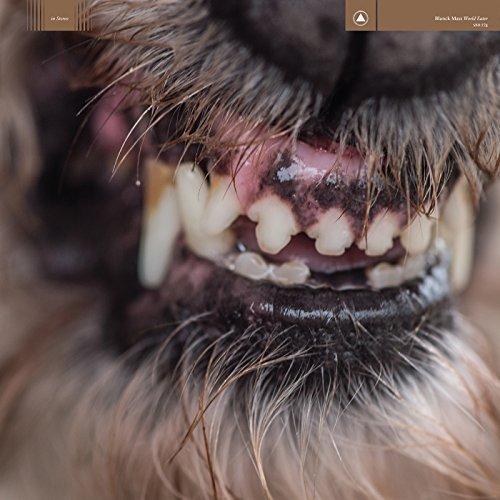 cachorro do demônio