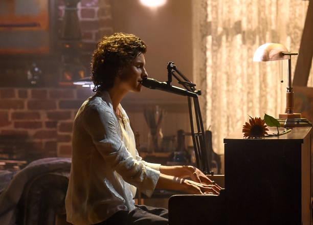 A imagem mostra o perfil de Shawn Mendes sentado em frente a um piano. Sobre o piano há um girassol e ao fundo podemos ver um ambiente bagunçado. Mendes usa uma camisa branca e tem os cabelos encaracolados.