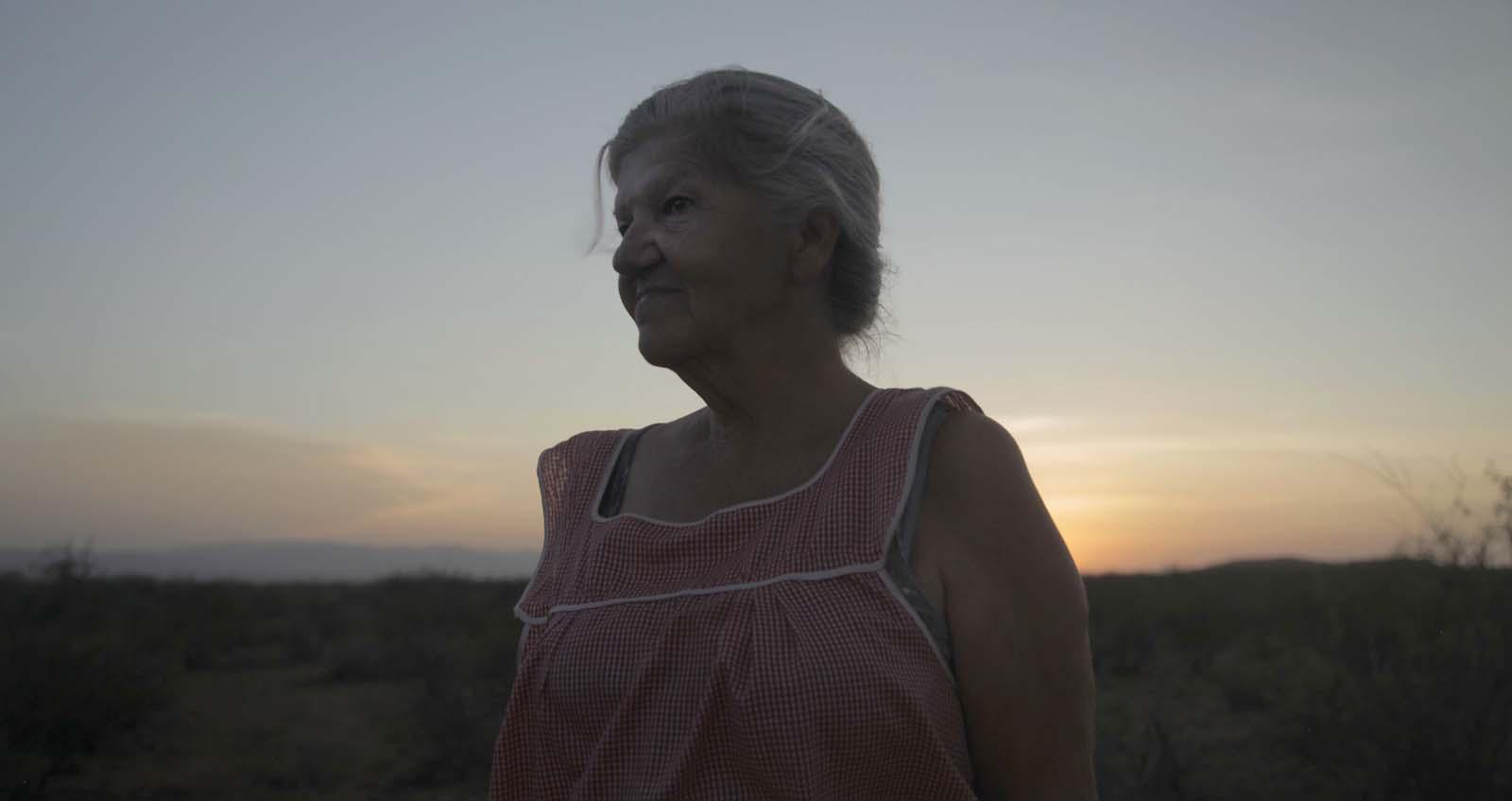 Cena do filme Nomadland. Nela, vemos Linda May ao anoitecer. Ela é uma mulher branca, idosa e grisalha. Usa cabelo preso num coque e veste um vestido vermelho e branco. Está anoitecendo mas o sol ainda está no horizonte.