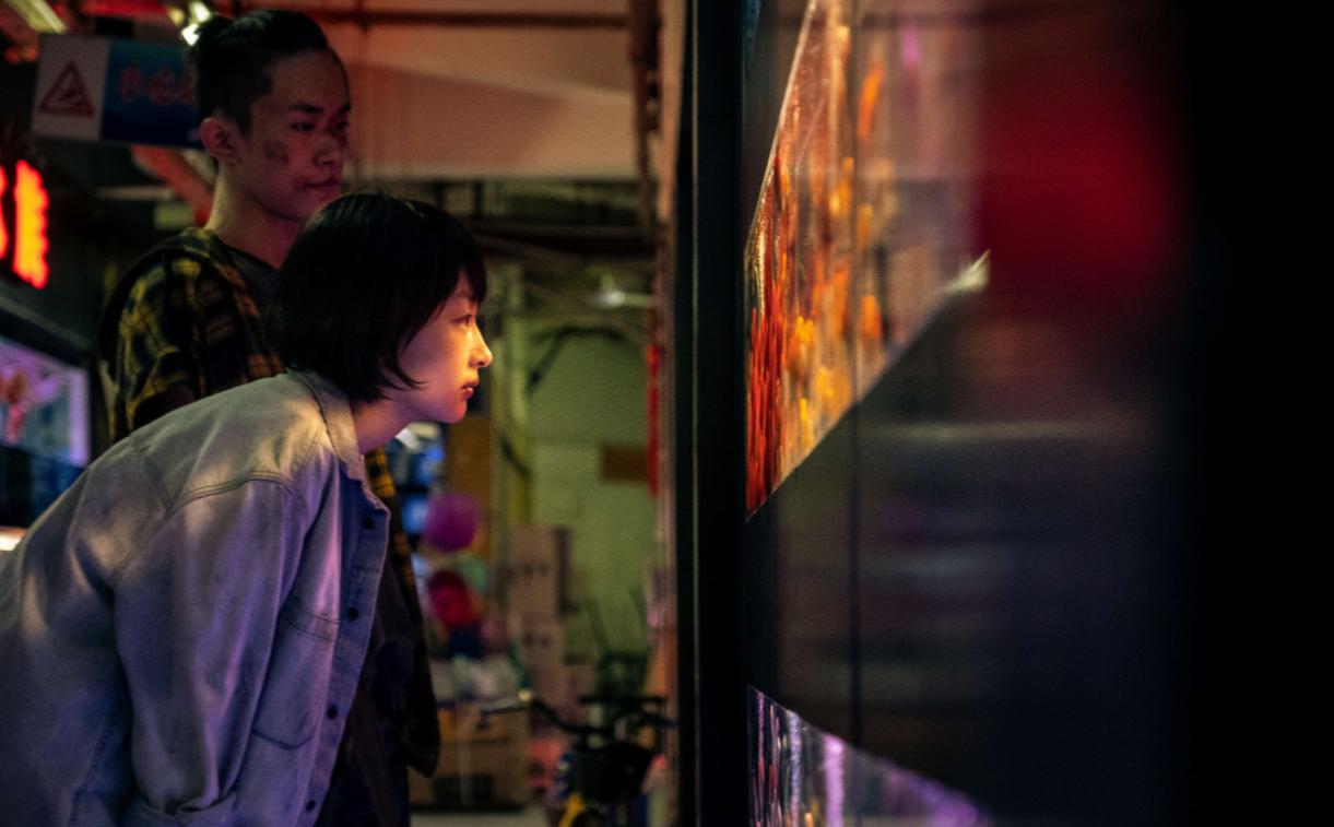 Cena do filme Better Days. A imagem mostra dois jovens, fotografados de lado e posicionados no lado esquerdo, observando um aquário que está à frente deles, ocupando o lado esquerdo da imagem. Em primeiro plano, pode-se observar a personagem Chen Nian, interpretada pela atriz Zhou Dongyu, uma mulher amarela, de cabelos curtos, na altura da orelha, lisos e pretos. Ela usa uma jaqueta jeans clara e olha para o aquário sorrindo levemente, e com as pernas flexionadas, apoiando as mãos no joelho. Atrás dela, de pé, está Liu Beishan, interpretado por Jackson Yee, um homem amarelo, de cabelos raspados nas laterais e mais compridos na parte de cima, presos num rabo pequeno, que veste uma blusa xadrez amarela. Ele está com o rosto ralado em algumas partes, com marcas de sangue, e olha para a frente com uma expressão séria e impaciente. Ao fundo, pode-se observar a continuação do corredor onde eles estão, e a imagem é colorida de forma vibrante.