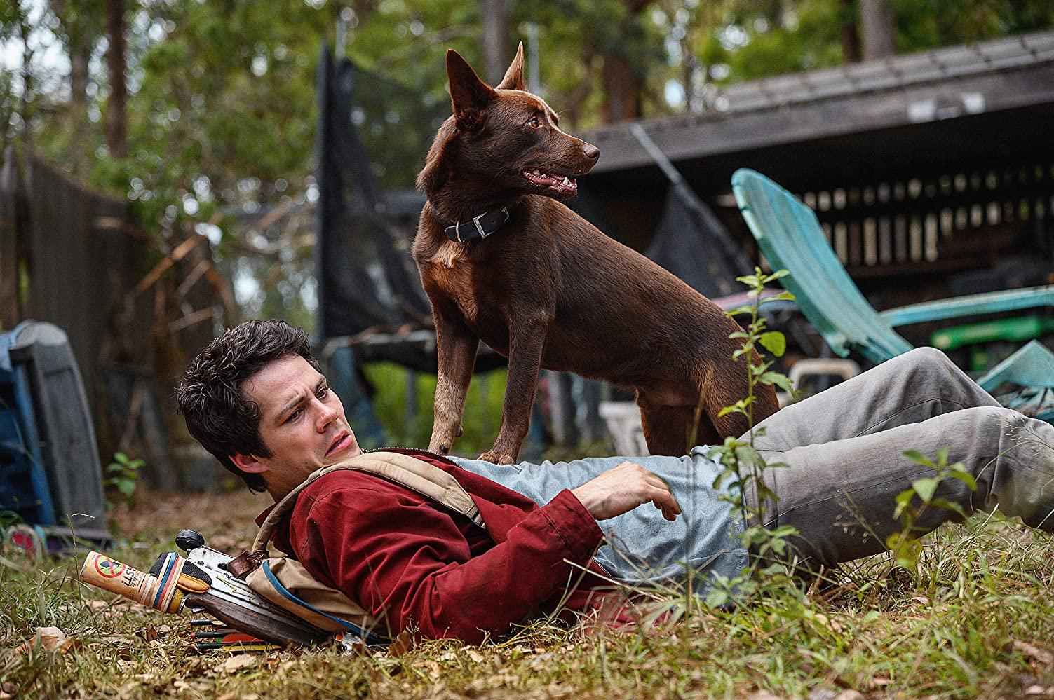Cena do filme Love & Monsters. O ator Dylan O'brien, homem branco de cabelo escuro curto, está deitado na grama, olhando para o lado direito da imagem com uma feição assustada. Ele veste blusa azul, jaqueta vermelha, calça jeans e uma bolsa bege. Em cima dele está um cachorro preto de porte médio, também olhando para a direita. No fundo é possível ver construções de madeira abandonadas e árvores.