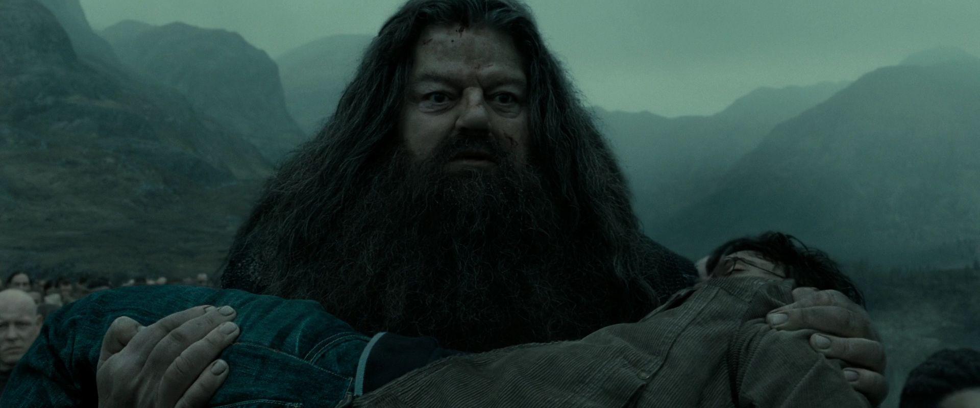 Cena do filme Harry Potter e as Relíquias da Morte: Parte 2. Na cena, vemos Rúbeo Hagrid, um gigante branco, gordo e de cabelos e barbas pretos, segurando Harry em seu colo.