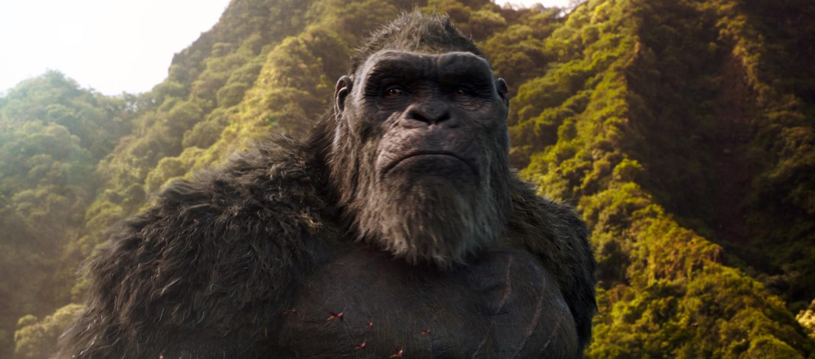 Cena do filme Godzilla vs Kong. A imagem é retangular e no centro dela há o Kong, mostrando apenas o seu busto, seu corpo está levemente virado e ele olha para frente. Atrás dele há montanhas cheias de árvores