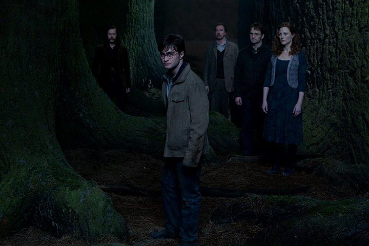 Cena do filme Harry Potter e as Relíquias da Morte: Parte 2. Na cena, vemos Harry caminhando à frente de seus entes queridos. A cena é escura, noturna e Harry é branco, tem cabelos pretos e usa óculos redondos.