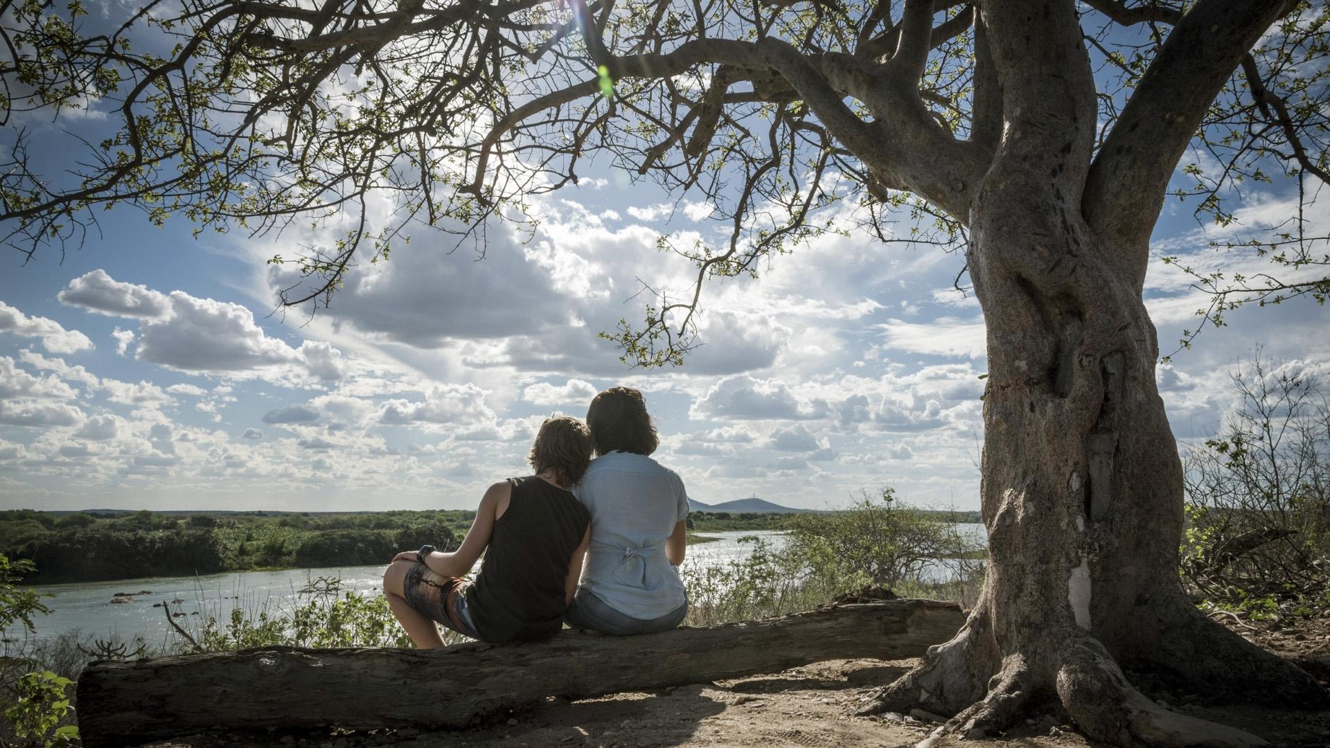 Foto de Acqua Movie. Alessandra Negrini e Antonio Haddad estão sentados no tronco de uma árvore, de costas para a foto. Eles olham na direção de um rio, o céu está bem iluminada e azul com nuvens. Ao lado direito, há uma grande árvore.