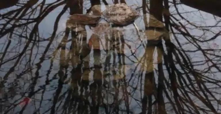 Cena do filme As Grandes Distâncias. O reflexo da superfície de uma lagoa sobrepõe a imagem refletida de múltiplos galhos de árvores às pedras ao fundo da lagoa.