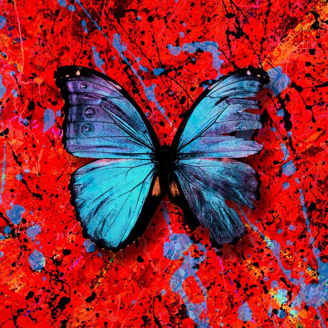 Capa do single Visiting Hours. O fundo é vermelho, com jatos de tinta preta e azul jogados aleatoriamente. Ao centro, está uma borboleta de asas abertas, azuis metalizadas.