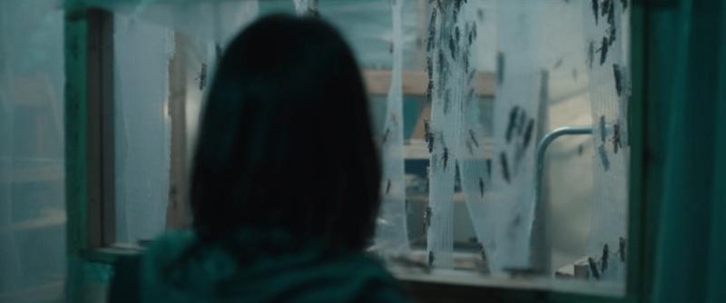 Cena do filme A Nuvem. Na imagem, em um primeiro plano ao lado esquerdo, vemos a silhueta embaçada da cabeça da protagonista Virginie de costas. Ao fundo, vemos uma janela de vidro com gafanhotos por trás