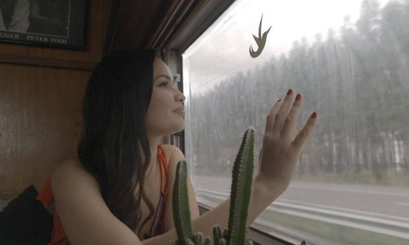 Cena do documentário Você nunca esteve sozinha. Na imagem, a ganhadora do BBB21, Juliette Freire, está ao centro, encostada na janela de um ônibus e olhando para a paisagem do lado de fora. Juliette é uma mulher branca de cabelos castanhos compridos, usa um vestido de alças finas laranja, e sua expressão é de felicidade e admiração ao observar a paisagem. Ela está sentada e sua mão direita está apoiada na janela que mostra uma rodovia e muitas árvores. Acima de sua mão há um pequeno colante em formato de pássaro. Abaixo de sua mão há um vaso com cactos. O fundo mostra parte do ônibus com paredes de madeira.