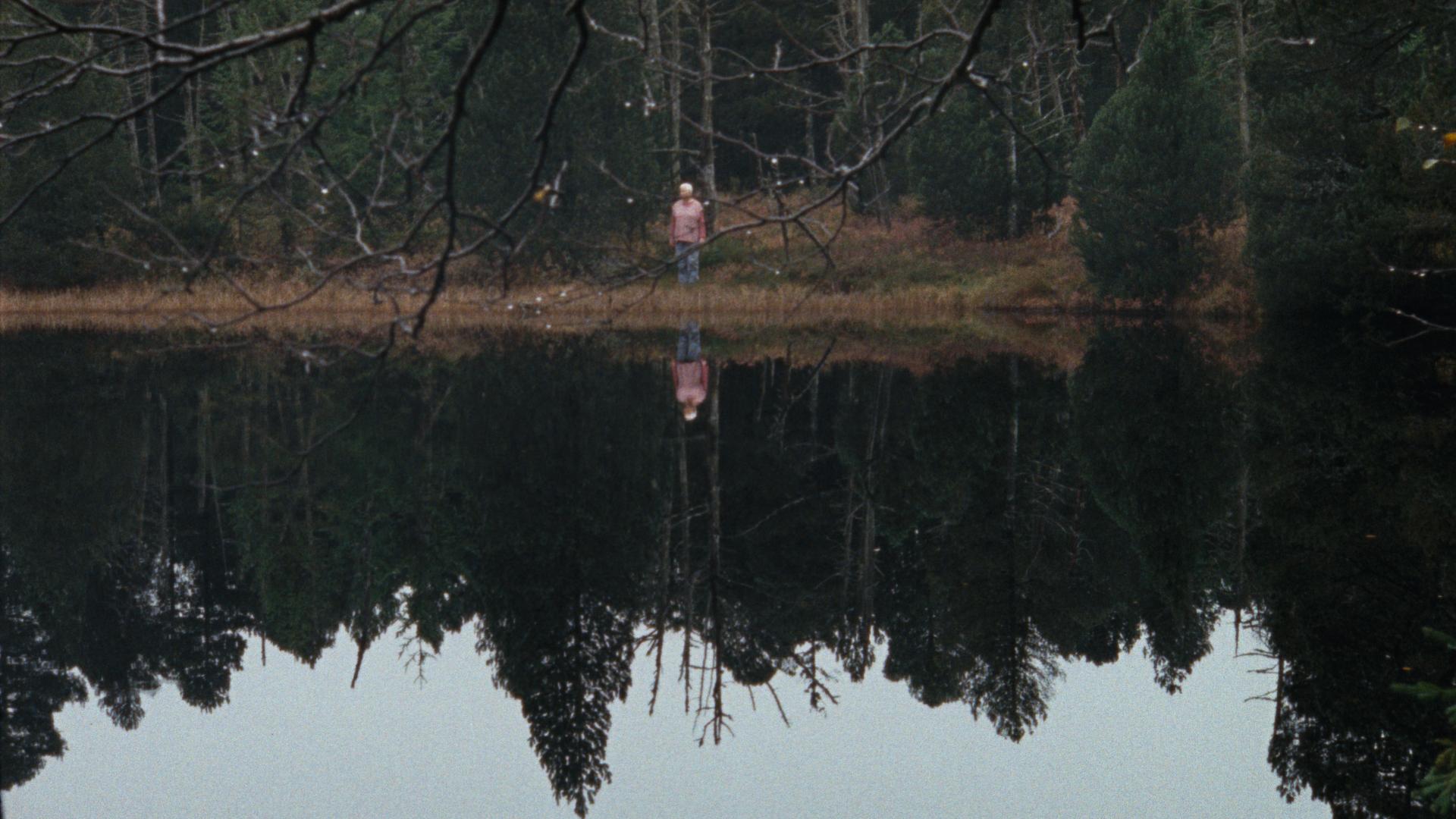 Cena do filme Madeira e Água. A imagem mostra à distância uma mulher branca de meia idade na frente de uma densa floresta de pinheiros e de frente para um lago de água cristalina. Na água, vemos o reflexo da floresta e a mulher.